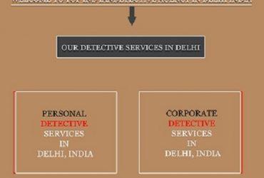 Professional Detective Agency Delhi || Top Indian Detective Agency
