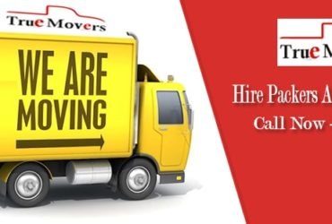 Professional Packers And Movers Bangalore – Truemovers.in