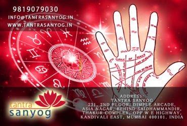 Best Palmist in Mumbai | Best Palmist Service in Mumbai – Tantrasanyog