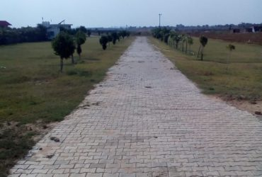 3 Bigha Land for Industry / Ware Housing Available for Sale in Khushkhera.