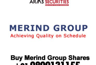 Merind limited share price