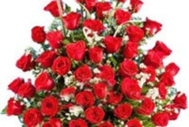 Order Online Flowers To Vizag, Door Delivery Of Flowers Visakhapatnam
