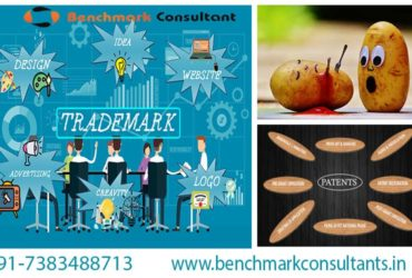 Logo Registration Services Providers in Ahmedabad