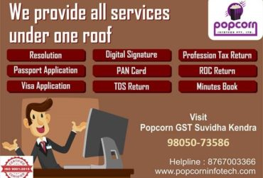 GST, Accounting, TAX, PAN, Passport services available at affordable prices.