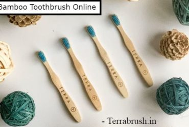 Bamboo toothbrush India – Terrabrush