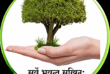 Ayurveda Therapies and Panchakarma Therapies at Jaipur