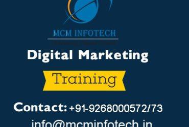 Top 10 IT Training Institute in Delhi | MCM Infotech