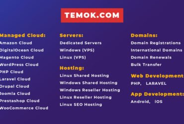 Cheap Web Hostign | Dedicated Server | Temok IT Services