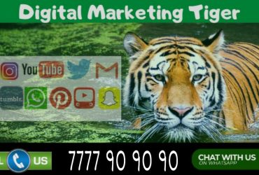 India's Best Digital Marketing, Website Design & Development Services Provider Just A Call Away !