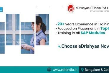 edrishyaa IT India Pvt Ltd-SAP PARTNER