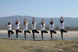 Hatha yoga Teacher Training India | Yoga Courses Rishikesh | Pratham Yoga