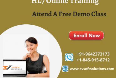 Best HL7 Online Training from SV SoftSolutions