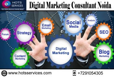 The Role of a Digital Marketing Consultant in Delhi, and Noida