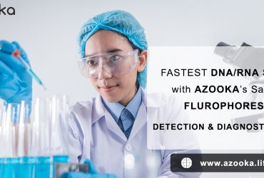 Safe and Fast RNA extraction kit – Total RNA extraction – azooka.life