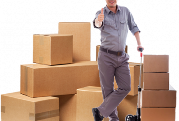 Professional Movers And Packers In Noida