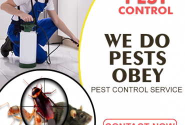 MM Pest Control Company In India