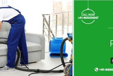 Best sofa cleaning service – one stop-destination   Dominant Services